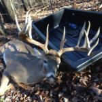 Deer Harvested with Solution LS Crossbow