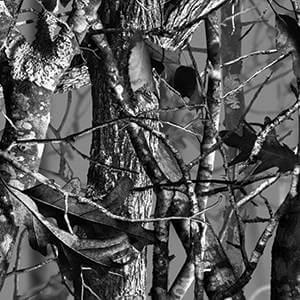 Barnett Ghost 420 Revenant Mossy Oak Treestand Monochromatic